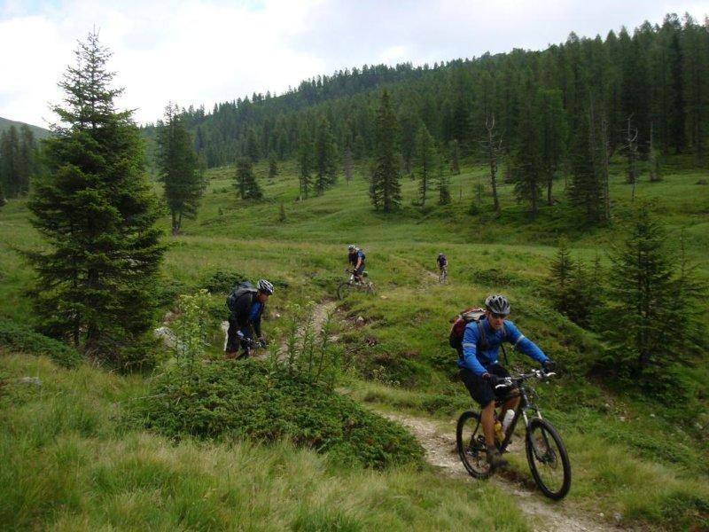 Biciclette che scendono da Cima Tognola verso Caoria