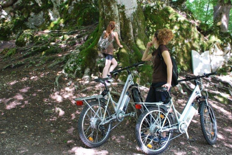 Bike Villa 5