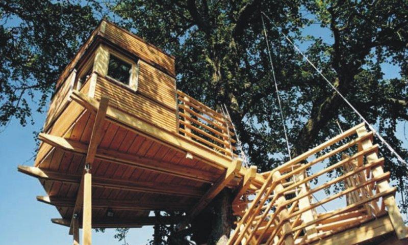 Casa sugli alberi 5