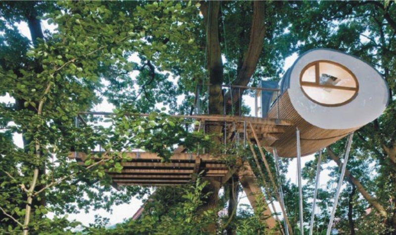 Casa sugli alberi 6
