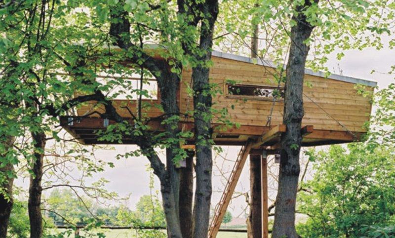 Casa sugli alberi 7