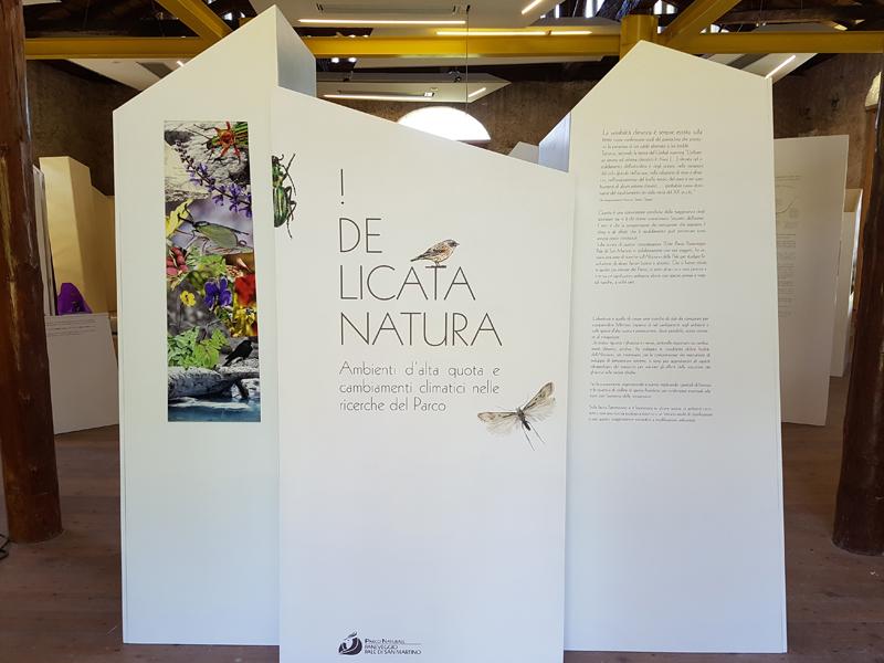 Delicata Natura 3