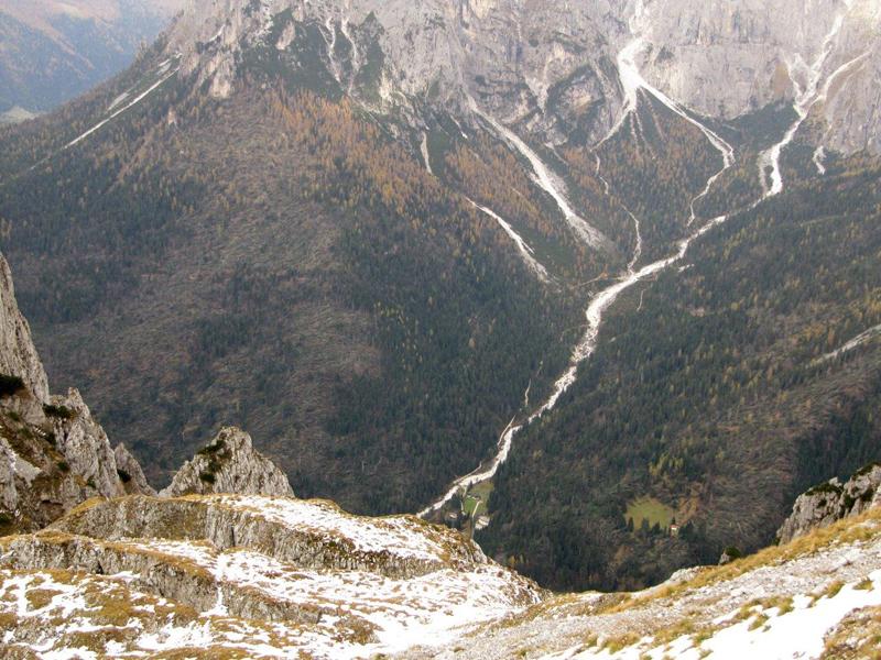 Distruzione del bosco in Val Canali novembre 2018 - foto 2