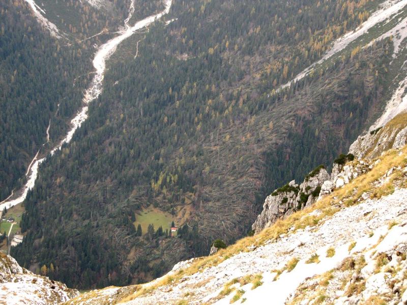 Distruzione del bosco in Val Canali novembre 2018 - foto 3