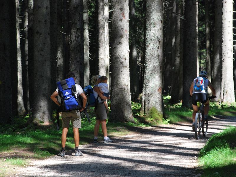Escursionisti sul Sentiero naturalistico Marciò a Paneveggio