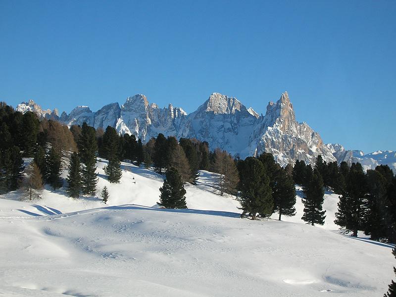 Il Gruppo della Pale di San Martino da Alpe Lusia