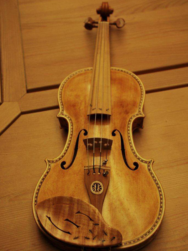 Il violino donato al Parco