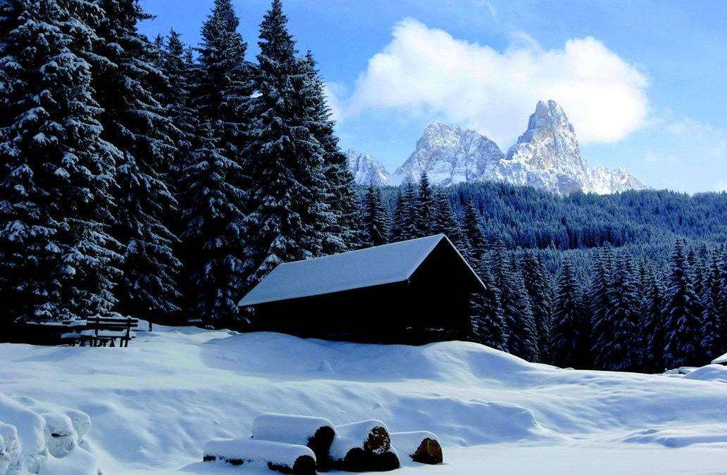 Vivere il Parco d'inverno