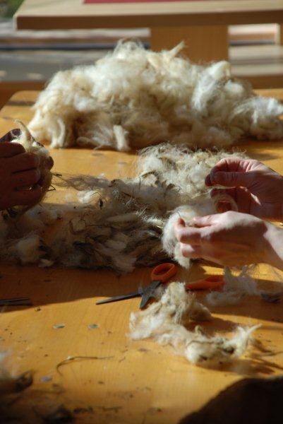 Lavorazione lana 1