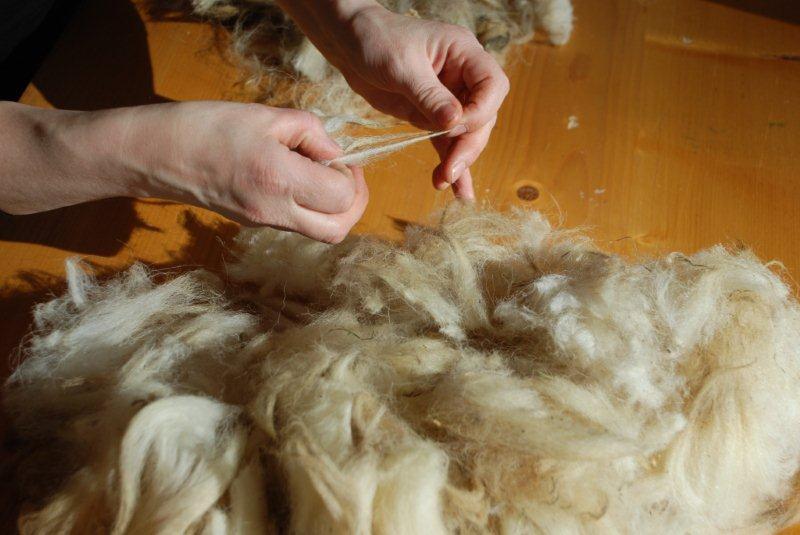 Lavorazione lana 4