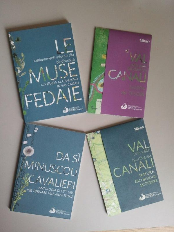 Le muse fedaie