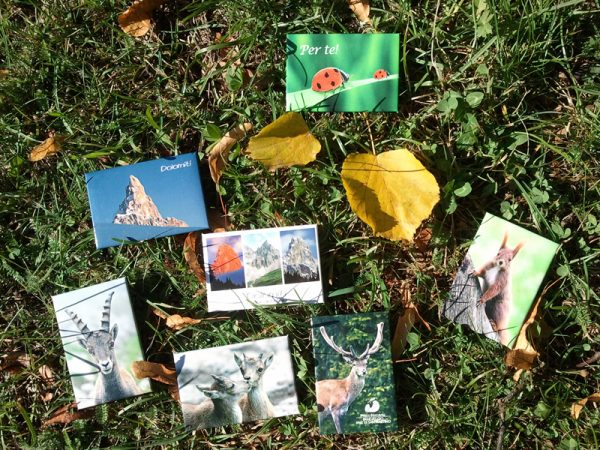 Magneti con panorami e fauna del Parco