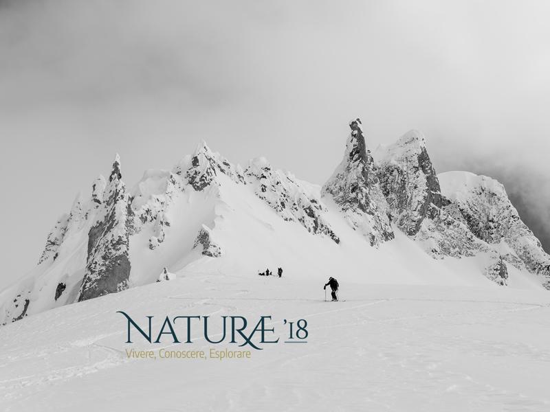 NATURAE18 Numinous