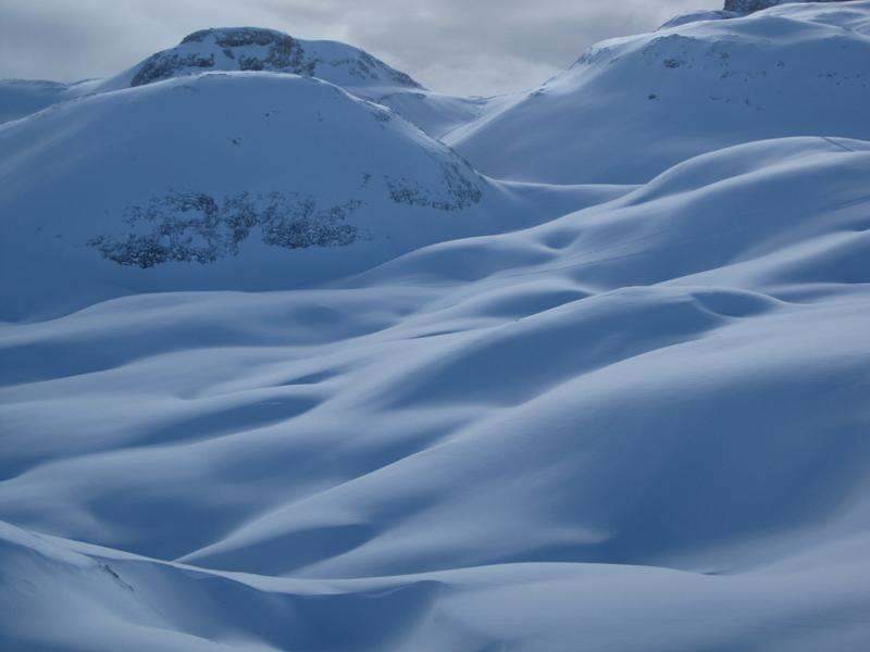 Pale di San Martino Frost Hollow 1