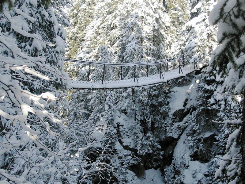 Ponte sospeso Forra Travignolo inverno