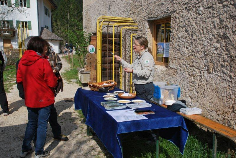 Primavera in Val Canali 25 aprile 2015 3