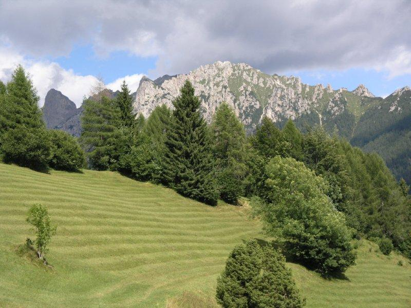Località Tambra in Val Canali