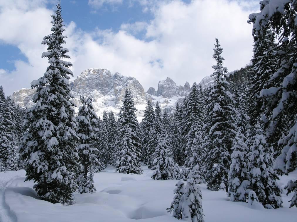 Venegia 1 inverno