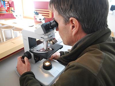 Pollini - Maurizio Salvadori microscopio