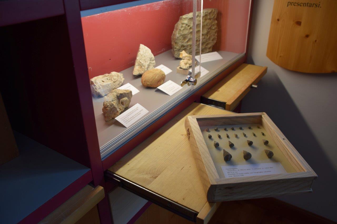 Biblioteca Fossili 3