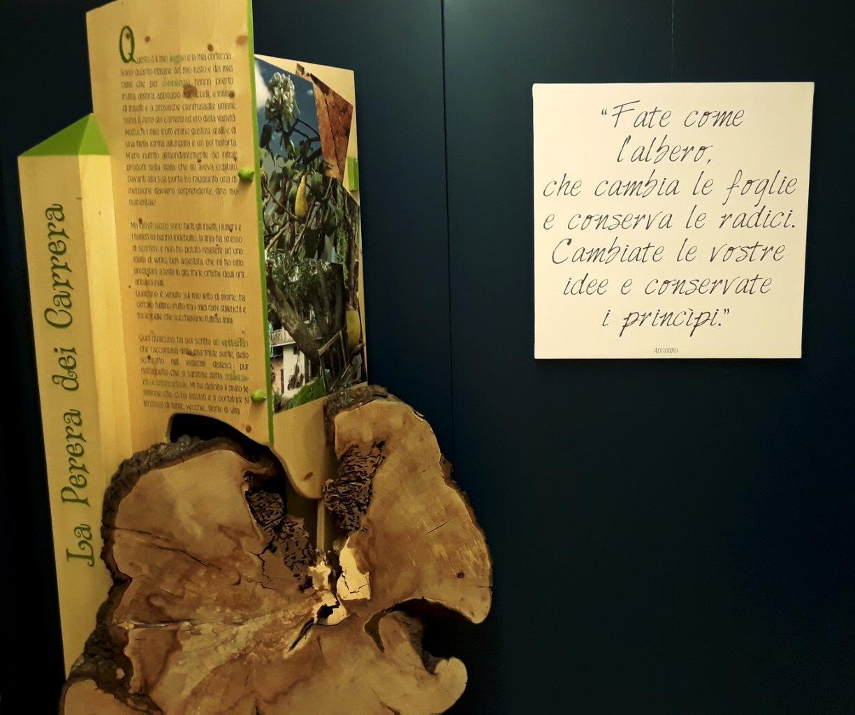 Mostra Parco al Museo Fondazione Rovereto 3