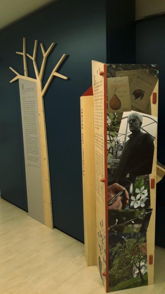 Mostra Parco al Museo Fondazione Rovereto 4