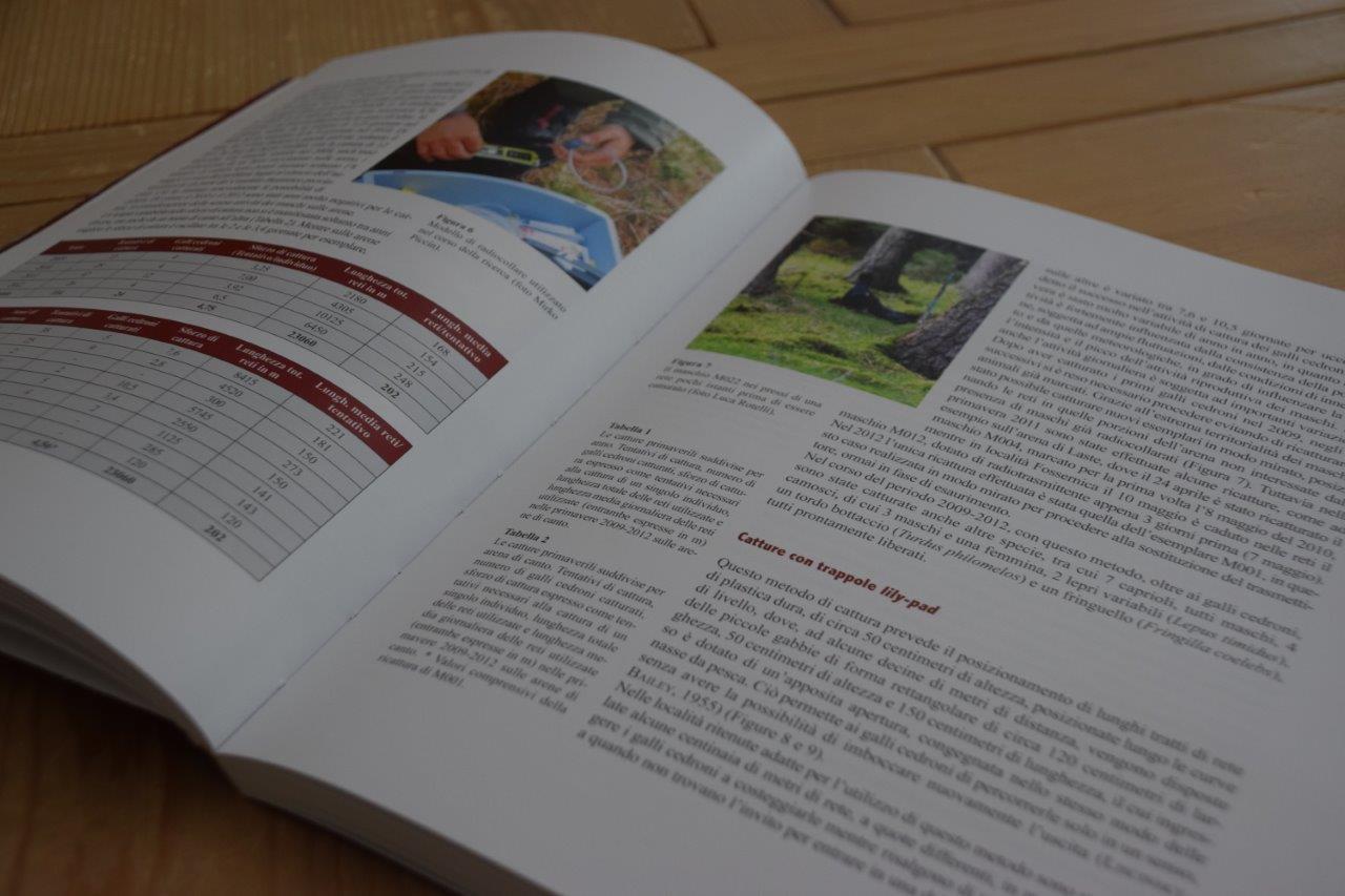 I Quaderni del Parco